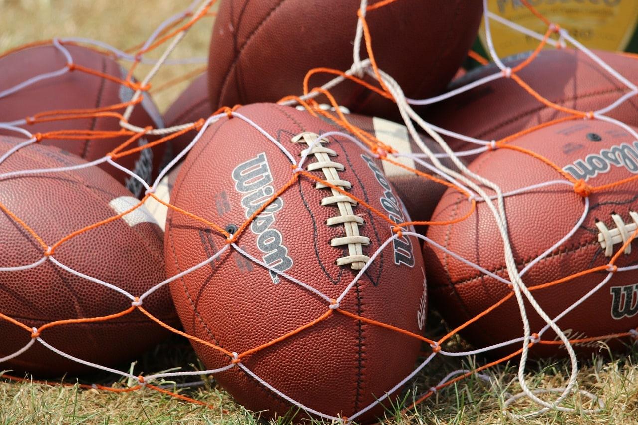 Bag of American footballs.