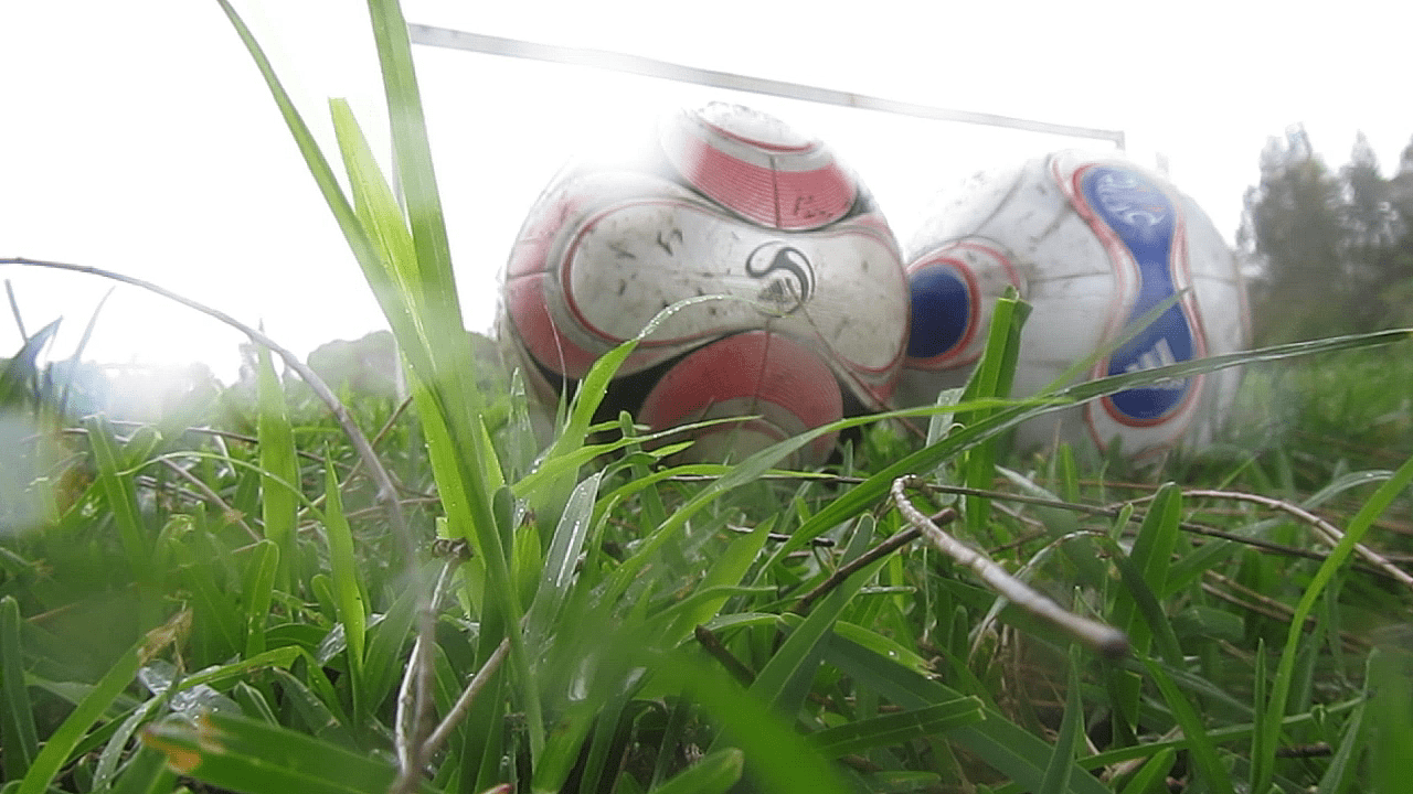 Soccer balls in grass.
