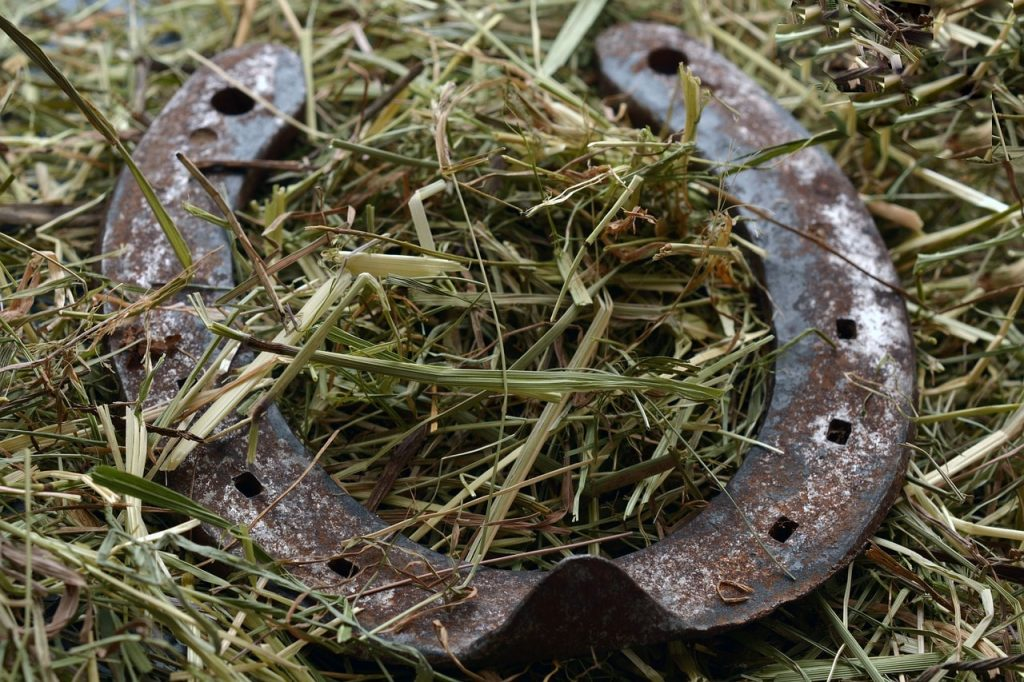 A horseshoe resting in some hay.