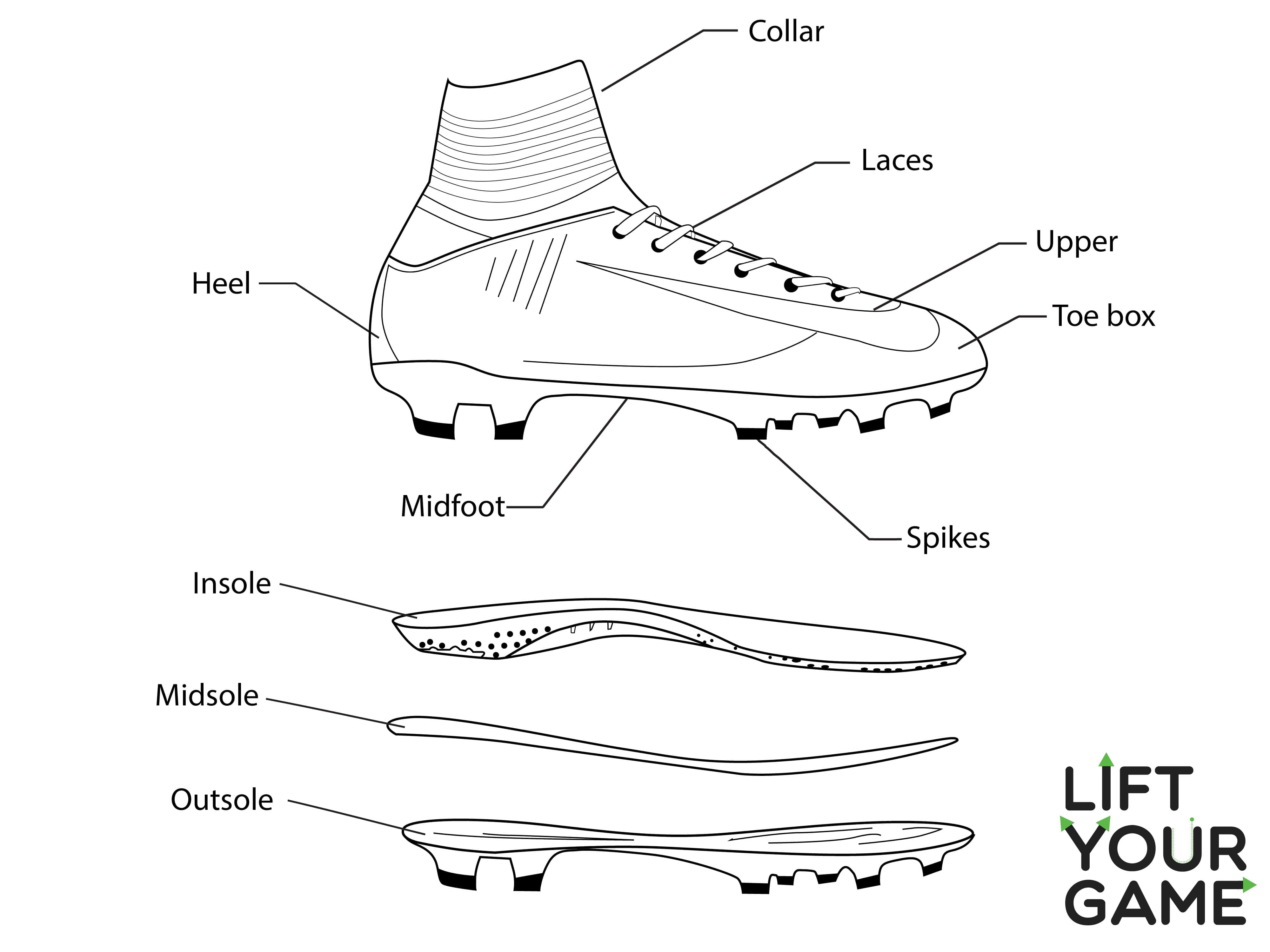 Diagram of a soccer cleat.